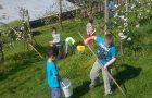 Urejanje okolice šole z učenci PP A in Č