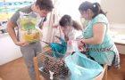 Skrbimo za morska prašička
