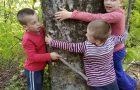 ND Doživetje v gozdu v 1. in 2.r