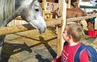 Na konja (projekt PEGAS), športni dan (2.-4.r)